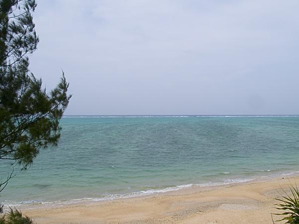sea_banian.jpg