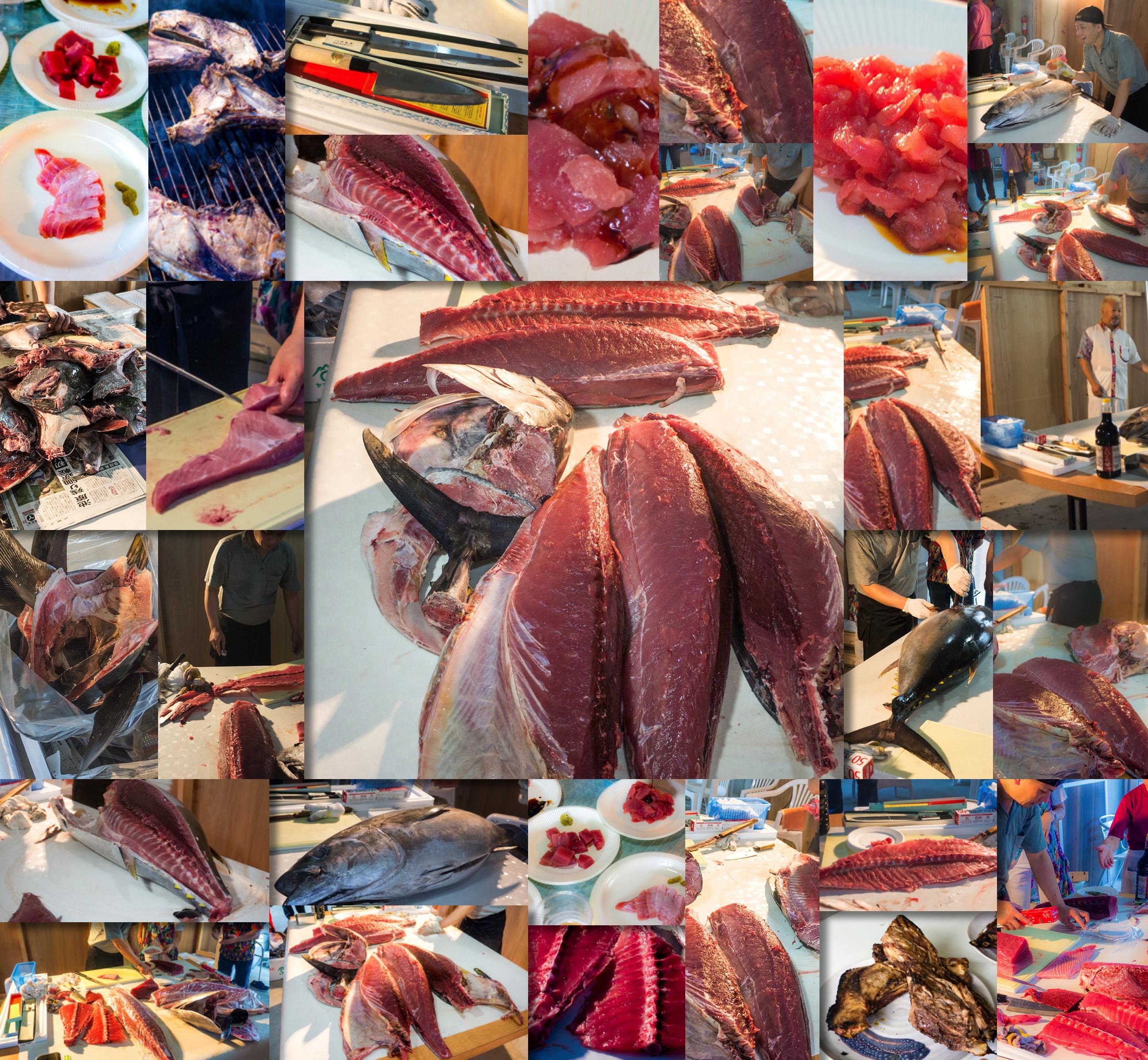 43_collage_magro_onnasonbase140614.jpg