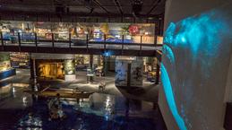 OceanicCultureMuseum06.jpg
