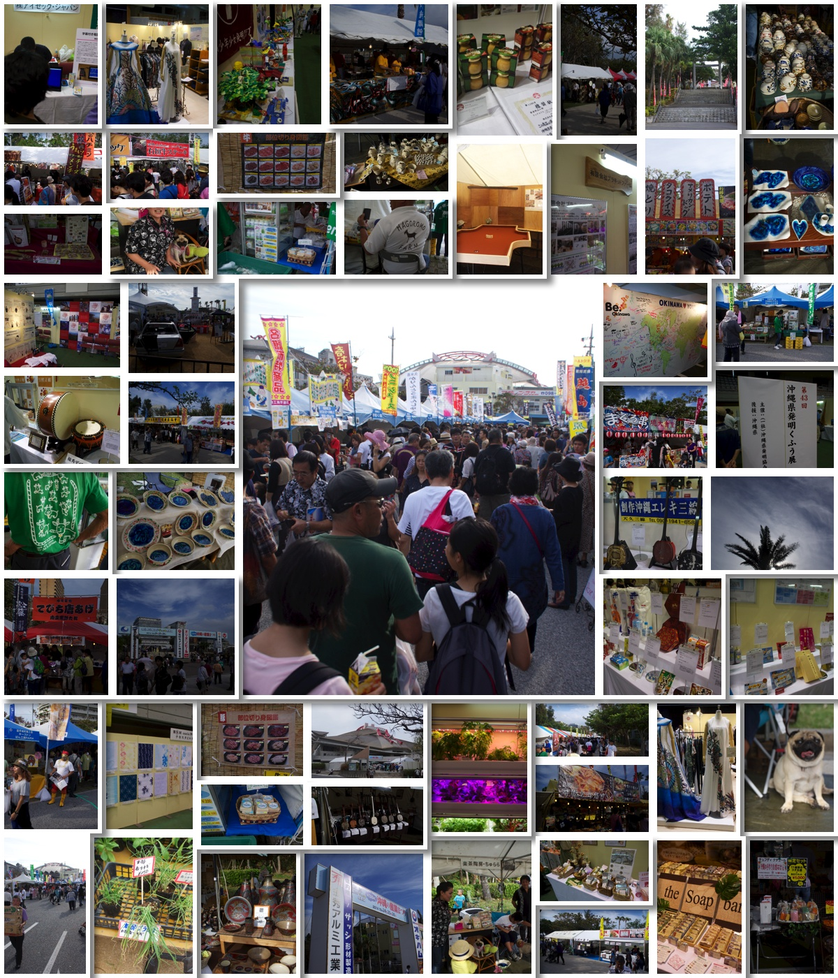 collage01_osf2014.jpg