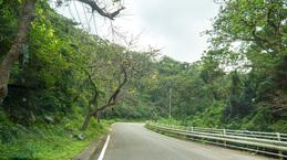 ent_road141205yaedake.jpg
