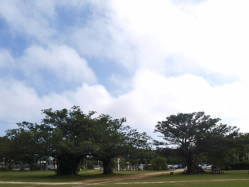gajumaru_plaza_gangara.jpg