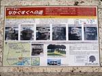 info_kiyuna_shisar.jpg