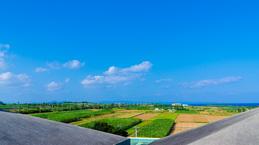 island_roof_ichinanari2014.jpg