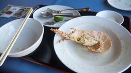 lobster_fin_umihana.jpg