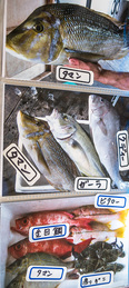 menu_fish_ajike.jpg