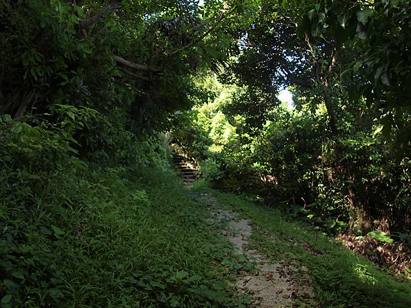 road4_hanta100911.jpg