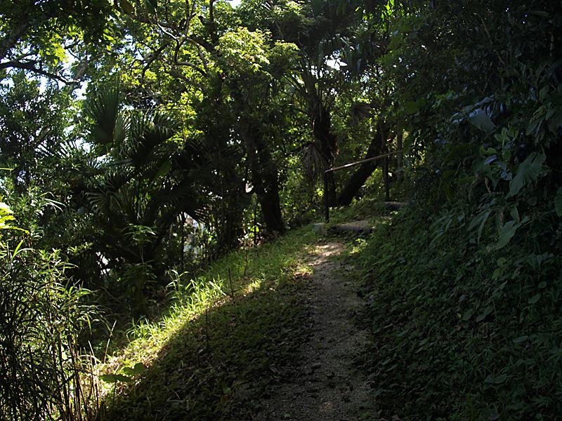 road5_hanta100911.jpg