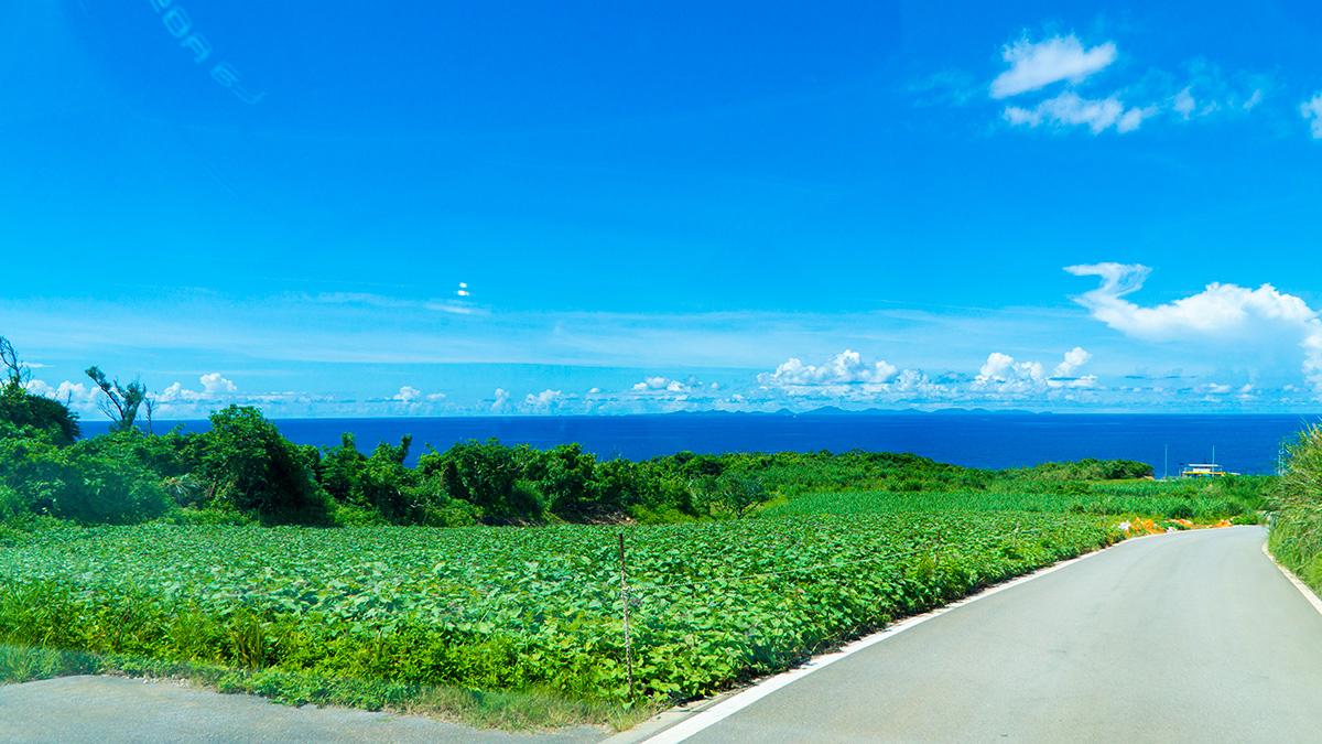 road_kourijima.jpg