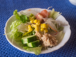 salada_130216-granblue.jpg
