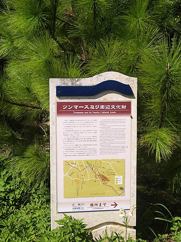 tsunmas_info_pine.jpg