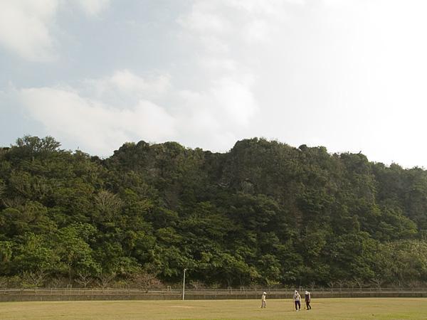 sakura18top_060127.jpg